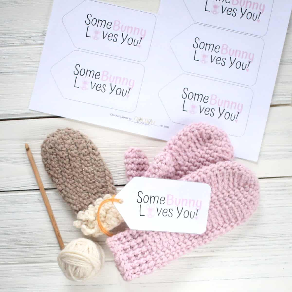 Gingham Bunny Gift Tags - Some Bunny Loves You